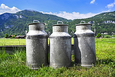 Milk cans in front of meadow and mountains