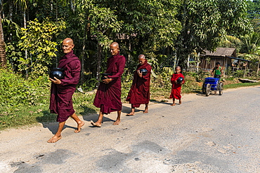 Monks on their early morning walk for rice, Dawei, Mon state, Myanmar, Asia
