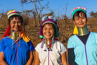Laughing three Padaung women, Loikaw area, Kayah state, Myanmar, Asia