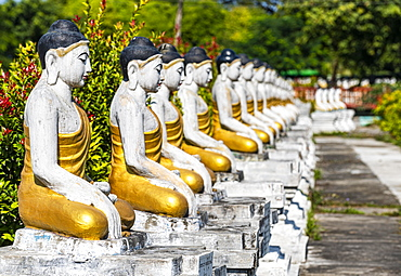 Buddhas lining up, Aung Zay Yan Aung Pagoda, Myitkyina, Kachin state, Myanmar, Asia