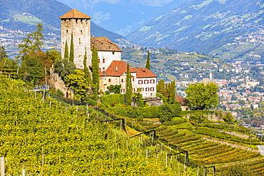 Lebenberg Castle above vineyards, view from the Marlinger Waalweg, Province of Bolzano, South Tyrol, Italy, Europe - 832-390411