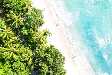 Takamaka beach Mahe Mahe paradise ocean palm trees drone shot bird's eye view, Mahe, Seychelles, Africa