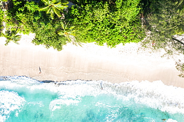 Takamaka beach sea holiday waves ocean drone shot bird's eye view, Mahe, Seychelles, Africa