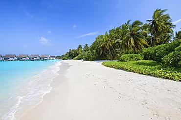 Maldives Beach, Kuramathi, Maldives, Asia