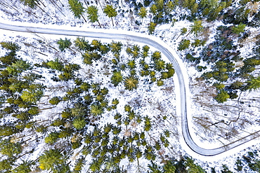 Drone image, winter in Swabian Forest, mixed forest, Baden-Wuerttemberg, Germany, Europe