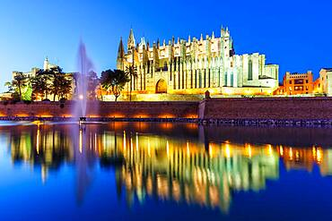 Catedral de Palma Cathedral Church Evening Night Travel Travel in Majorca, Spain, Europe