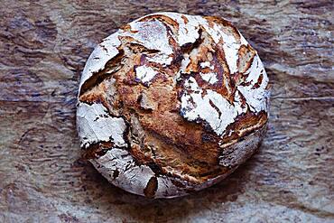 Home-made organic sourdough bread, Lower Austria, Austria, Europe