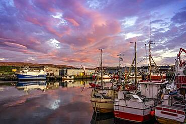 Berlevag, Port, Varanger, Norway, Europe