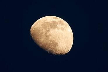 Rising moon near Speyer, Rhineland-Palatinate, Germany, Europe