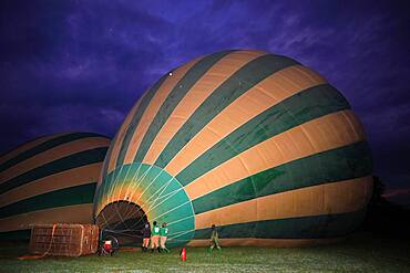 Hot air balloon being filled, inflated, blue hour, Masai Mara National Reserve, Kenya, Africa