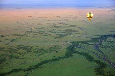Hot air balloon over savannah, Masai Mara National Reserve, Kenya, Africa