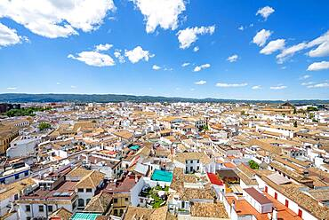View over the houses in the city center, Cordoba, Andalusia, Spain, Europe - 832-390819