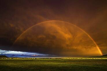 Rainbow on steppe with sunset, Arkhangai province, Mongolia, Asia