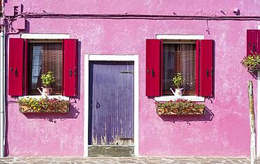 Pink house with windows and floral decorations, colorful facade, morbid, Burano island, Venice, Veneto, Italy, Europe