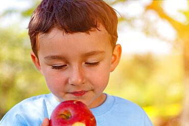 Child little boy eating apple fruit eating portrait outside spring, germany