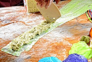 Fresh ravioli are filled, pasta dough, Germany, Europe