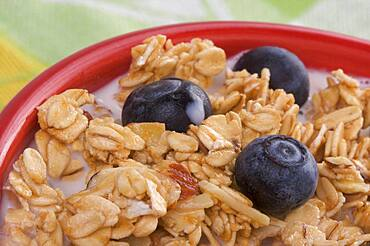 Bowl of granola and boysenberries in milk