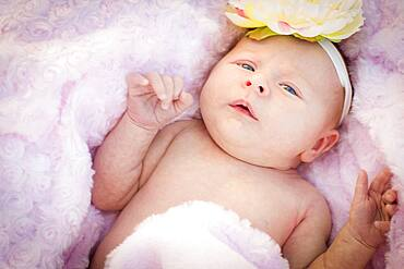 Beautiful newborn baby girl laying peacefully in soft pink blanket
