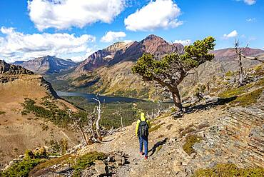 Hikers on the trail to Scenic Point, view of Two Medicine Lake with mountain peak Rising Wolf Mountain, Glacier National Park, Montana, USA, North America