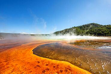 Steaming hot spring with colored mineral deposits, Grand Prismatic Spring, Midway Geyser Basin, Yellowstone National Park, Wyoming, USA, North America
