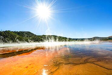 Steaming hot spring with sun star, Colored mineral deposits, Grand Prismatic Spring, Midway Geyser Basin, Yellowstone National Park, Wyoming, USA, North America