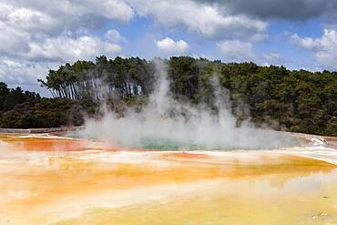 Geothermal area, Wai-O-Tapu, Rotorua, North Island, New Zealand, Oceania