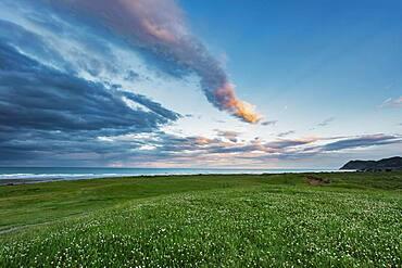 Sunset at beach, Gisborne District, East Cape, North Island, New Zealand, Oceania