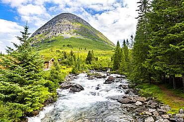 River running through the glacial valley, Trollstigen mountain road, Norway, Europe