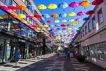 Open Umbrellas hanging over the pedestrian zone of Trondheim, Norway, Europe