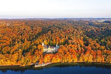 Seeburg Castle at Lake Starnberg in the evening light, near Muensing, autumnal mixed forest, Fuenfseenland, aerial view, Upper Bavaria, Bavaria, Germany, Europe
