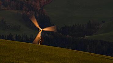 Windmill shines in the evening light, Mostviertel, Upper Austria, Austria, Europe