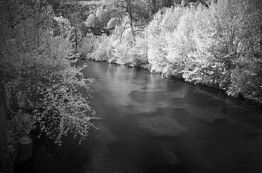 Infrared image, river Blau, Blaubeuren, Swabian Alb, Baden-Wuerttemberg, Germany, Europe