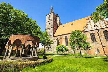 Soldier's memorial in front of the town church St. Nikolai, Jueterbog, Brandenburg, Germany, Europe