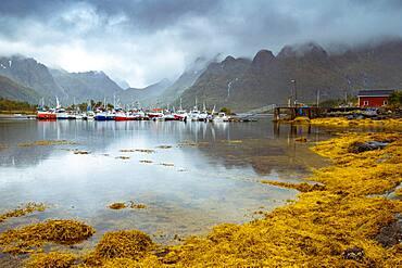 Sildpolltjonna, Lofoten, Norway, Europe