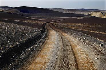 Slope, Track, Lava landscape, Laki fissure, Highland, Iceland, Europe
