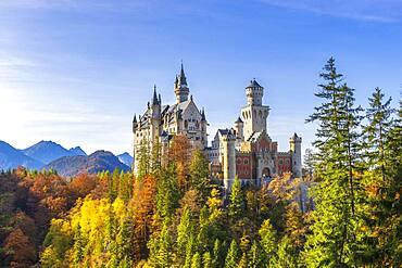 Neuschwanstein Castle in autumn, near Schwangau, Ostallgaeu, Allgaeu, Swabia, Bavaria, Germany, Europe