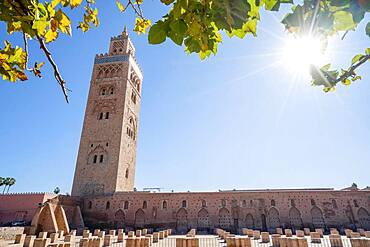 Koutoubia mosque from 12th century in old town of Marrakech, Morocco, Africa