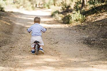 Back of cute toddler riding bicycle on dirt road in forest
