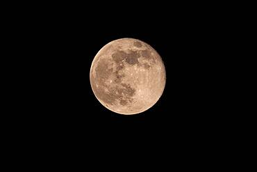 Full moon, North Rhine-Westphalia, Germany, Europe
