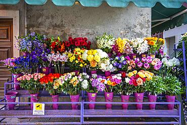 Stand selling flowers, cut flowers and bouquets, Venice, Veneto, Italy, Europe