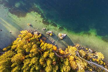Aerial view, lake and autumn trees from above, Hintersee, Berchtesgaden, Bavaria, Germany, Europe