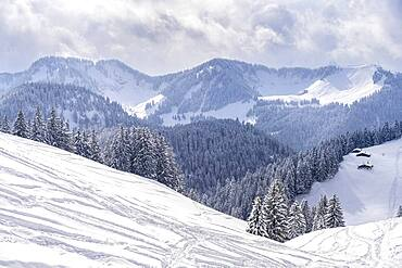Snowy mountains in winter, view of the Rosskopf, Mangfall Mountains, Bavarian Prealps, Upper Bavaria, Bavaria, Germany, Europe