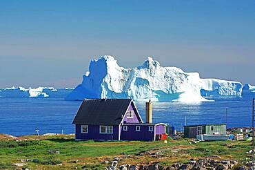 Purple wooden house in front of huge icebergs, Qeqertarsuaq, Disko Island, Disko Bay, Greenland, Denmark, North America