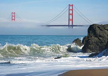The beautiful golden gate bridge in the morning fog, san francisco, california, United States of america