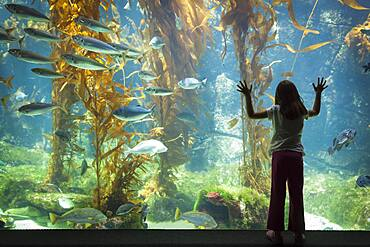 Amazed young girl standing up against large aquarium observation glass