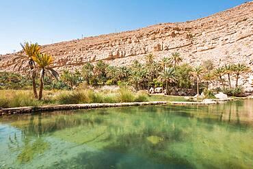 Landscape of Wadi Bani Khalid, Sultanate Of Oman