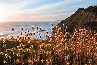 Sunset at Mahia Bay, Hawke's Bay, North Island, New Zealand, Oceania