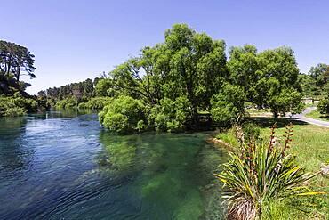 Landscape, Waikato River, Waikato, North Island, New Zealand, Oceania