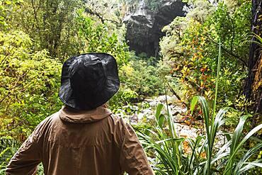 Guy at Oparara Basin, Kahurangi National Park, Nelson/Tasman, South Island, New Zealand, Oceania