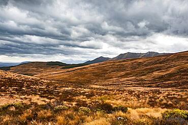 Landscape, South West New Zealand World Heritage Area, Te Wahipounamu, Fiordland National Park, South Island, New Zealand, Oceania